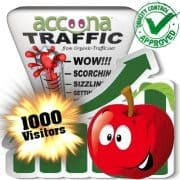 buy 1000 accoona referral search traffic visitors