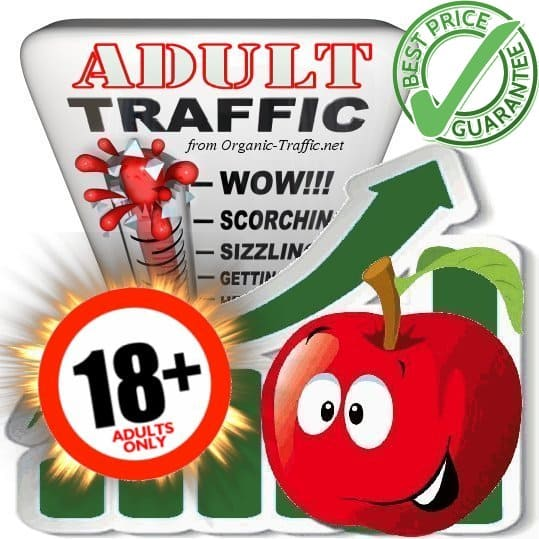 buy adult traffic visitors