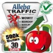 500k alleba search traffic visitors 30days