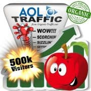 aol organic traffic visitors