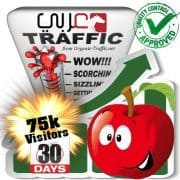 75k araby search traffic visitors 30days