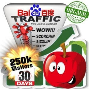 buy 250k baidu organic traffic visitors for 30days