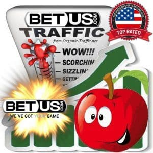 Buy BetUS.com.pa Web Traffic Service
