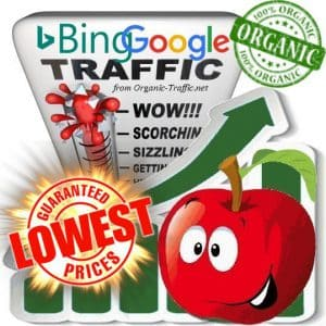 Buy Bing & Google Web traffic