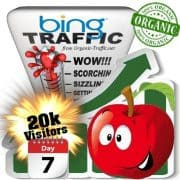 bing organic traffic visitors 7days 20k