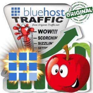 Buy Bluehost.com Web Traffic