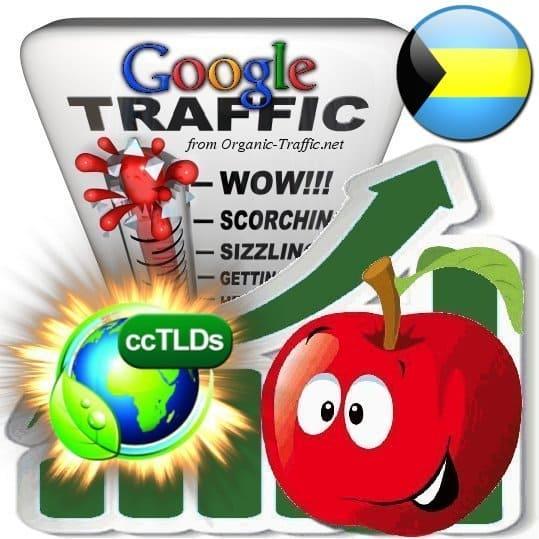 buy google bahamas organic traffic visitors