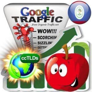 buy google belize organic traffic visitors