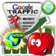 buy google brazil organic traffic visitors