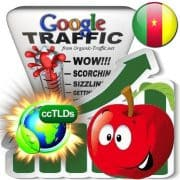 buy google cameroon organic traffic visitors