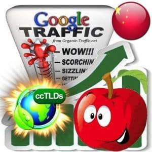 buy google china organic traffic visitors