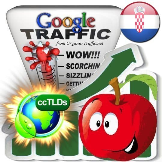 buy google croatia organic traffic visitors
