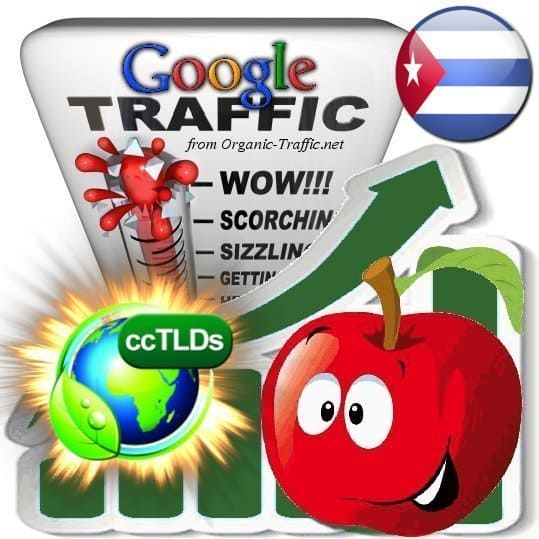 buy google cuba organic traffic visitors