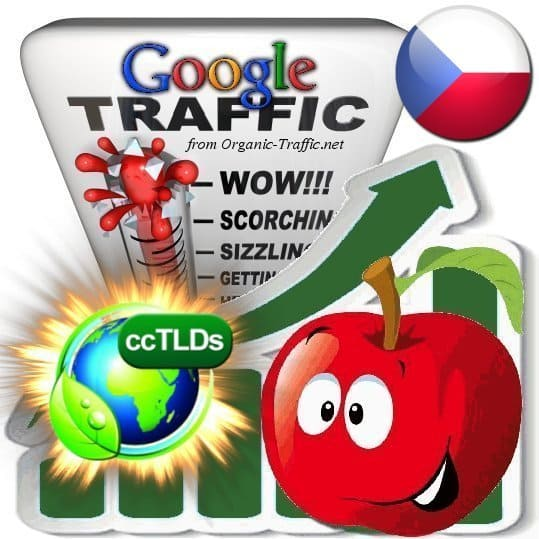 buy google czech republic organic traffic visitors