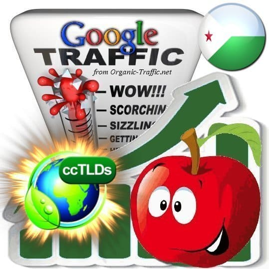 buy google djibouti organic traffic visitors