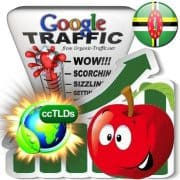 buy google dominica organic traffic visitors