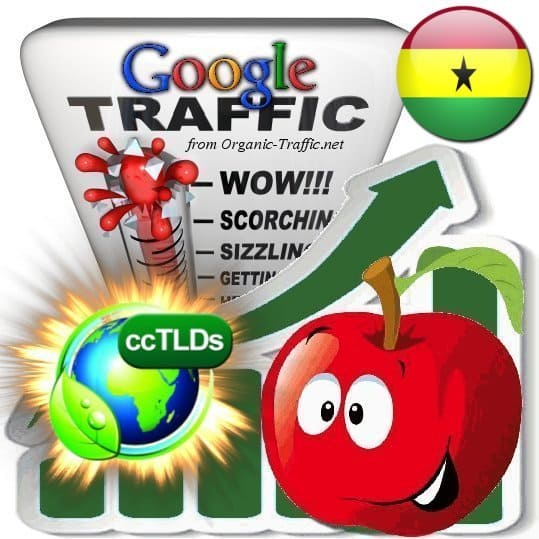 buy google ghana organic traffic visitors