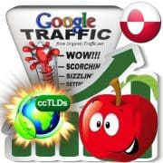 buy google greenland organic traffic visitors