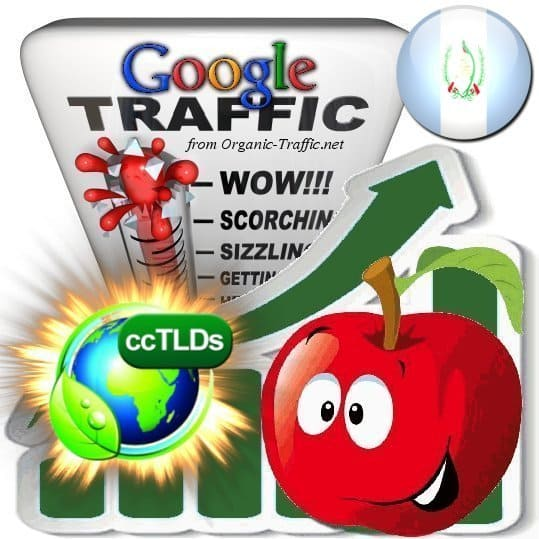 buy google guatemala organic traffic visitors