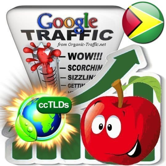 buy google guyana organic traffic visitors