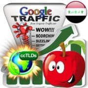 buy google iraq organic traffic visitors