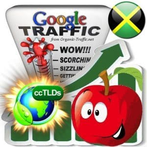 buy google jamaica organic traffic visitors