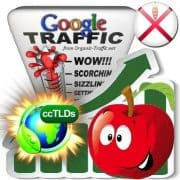 buy google jersey organic traffic visitors