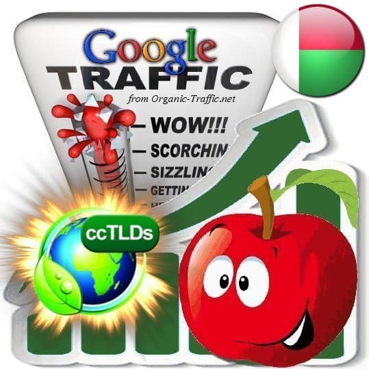 buy google madagascar organic traffic visitors