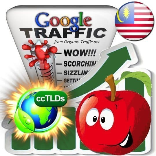 buy google malaysia organic traffic visitors