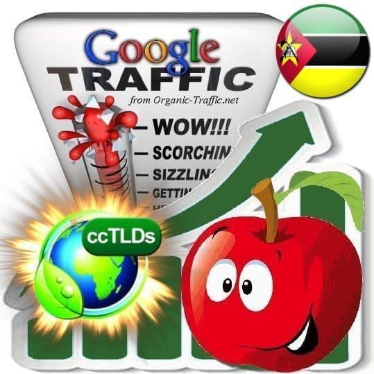 buy google mozambique organic traffic visitors