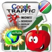 buy google namibia organic traffic visitors