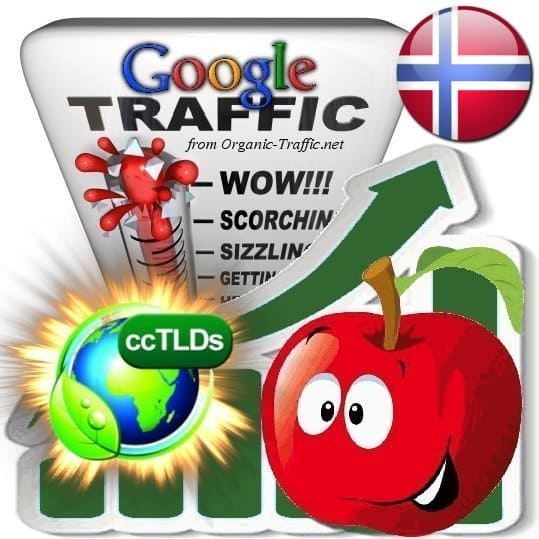 buy google norway organic traffic visitors