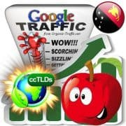 buy google papua new guinea organic traffic visitors