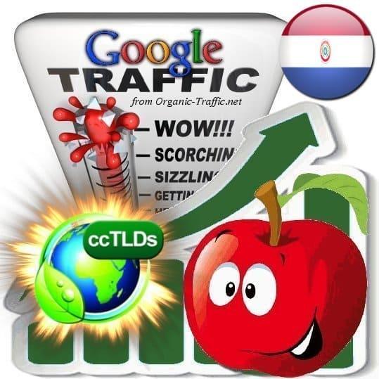 buy google paraguay organic traffic visitors