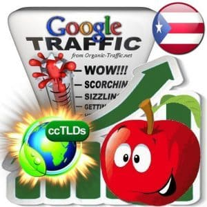 buy google puerto rico organic traffic visitors