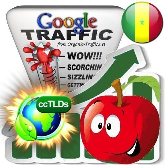 buy google senegal organic traffic visitors