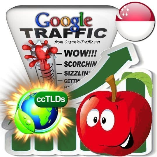 buy google singapore organic traffic visitors