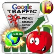 buy google sri lanka organic traffic visitors