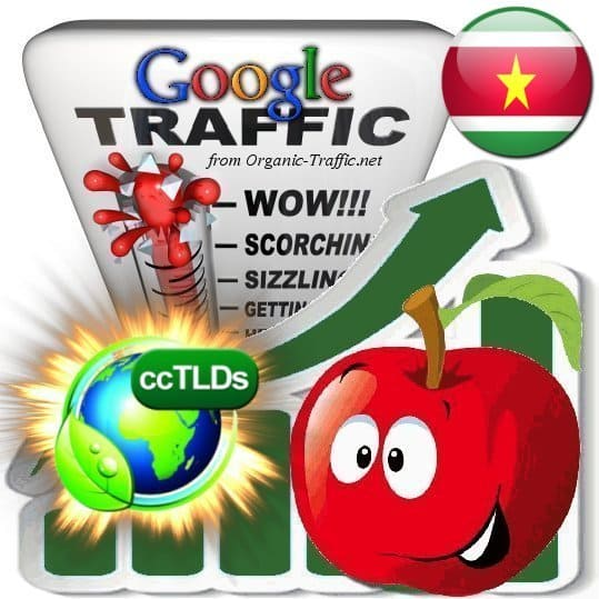 buy google suriname organic traffic visitors