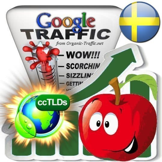 buy google sweden organic traffic visitors