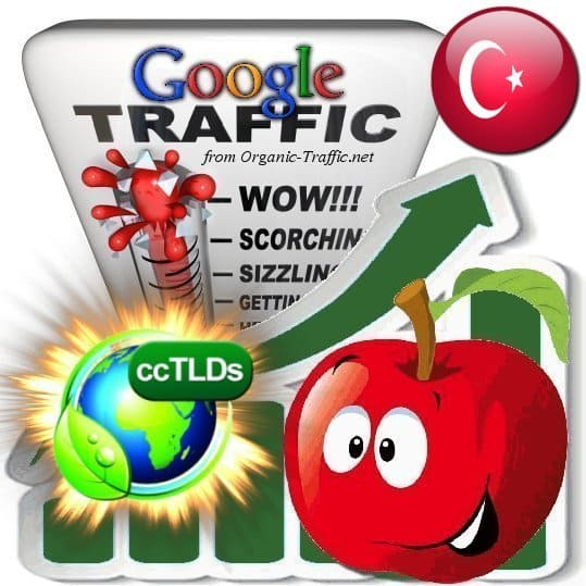 buy google turkey organic traffic visitors