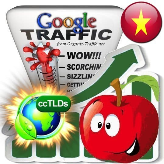 buy google vietnam organic traffic visitors