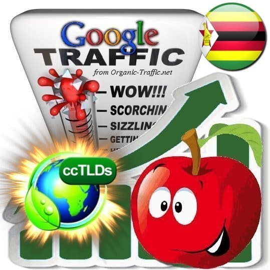 buy google zimbabwe organic traffic visitors