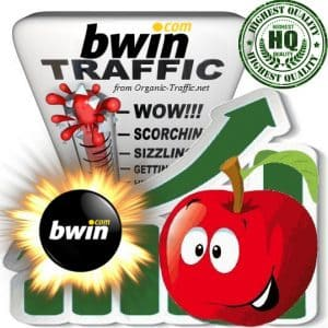 Buy bwin.com Web Traffic Service