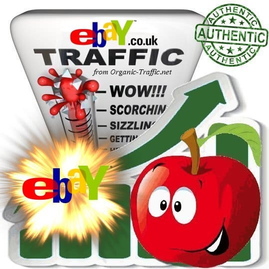 Buy Website Traffic eBay.co.uk