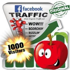 buy 1000 facebook social traffic visitors