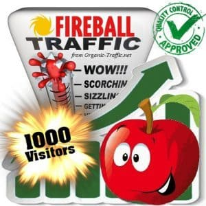 buy 1000 fireball search traffic visitors