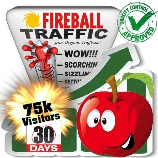 buy 75000 fireball search traffic visitors in 30 days