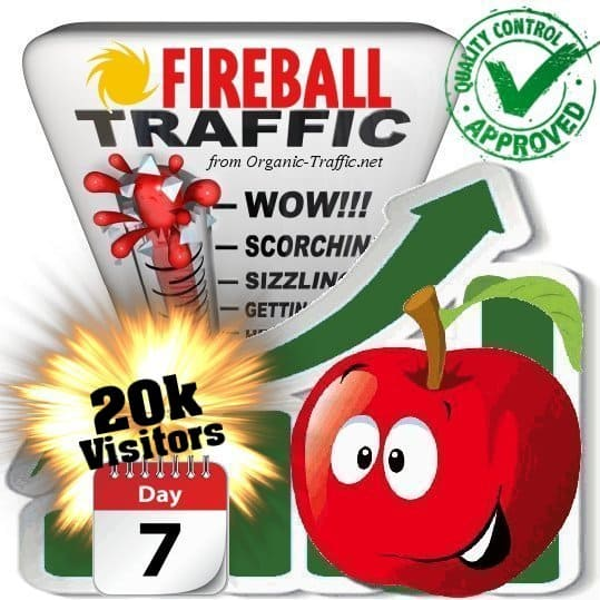 buy 20k fireball search traffic visitors in 7days