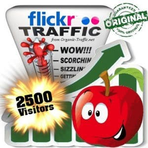 buy 2500 flickr social traffic visitors